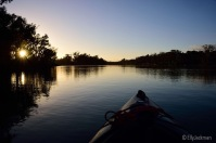 Kayaking on the Murray, early morning.
